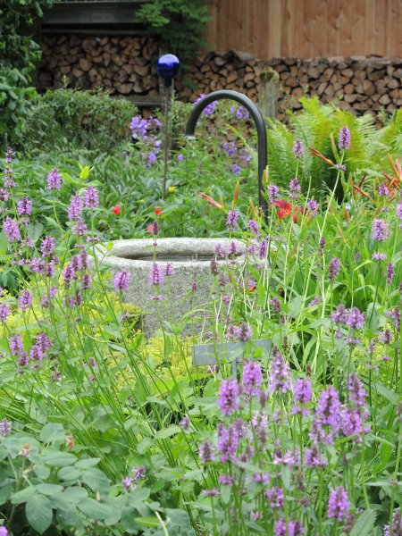 49_Im Bauerngarten von Frau Preisinger
