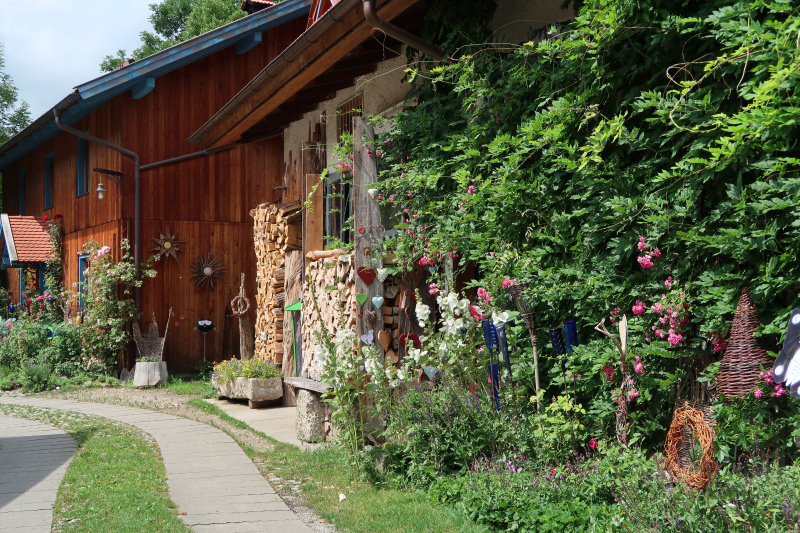 31_Im Bauerngarten von Frau Preisinger