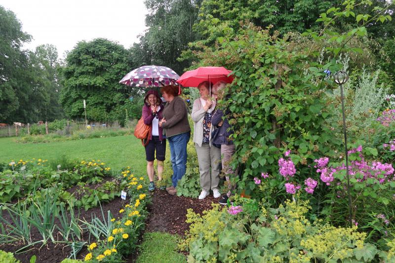 60_Im Bauerngarten von Frau Preisinger