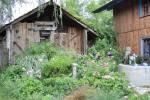35_Im Bauerngarten von Frau Preisinger