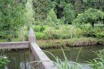 42_Im Bauerngarten von Frau Preisinger