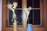 30 Strohblumen