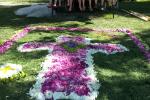 02 Blumenteppich