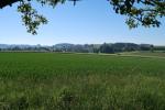 36 Aus Richtung Reichertshausen