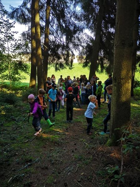 Waldnachmittag